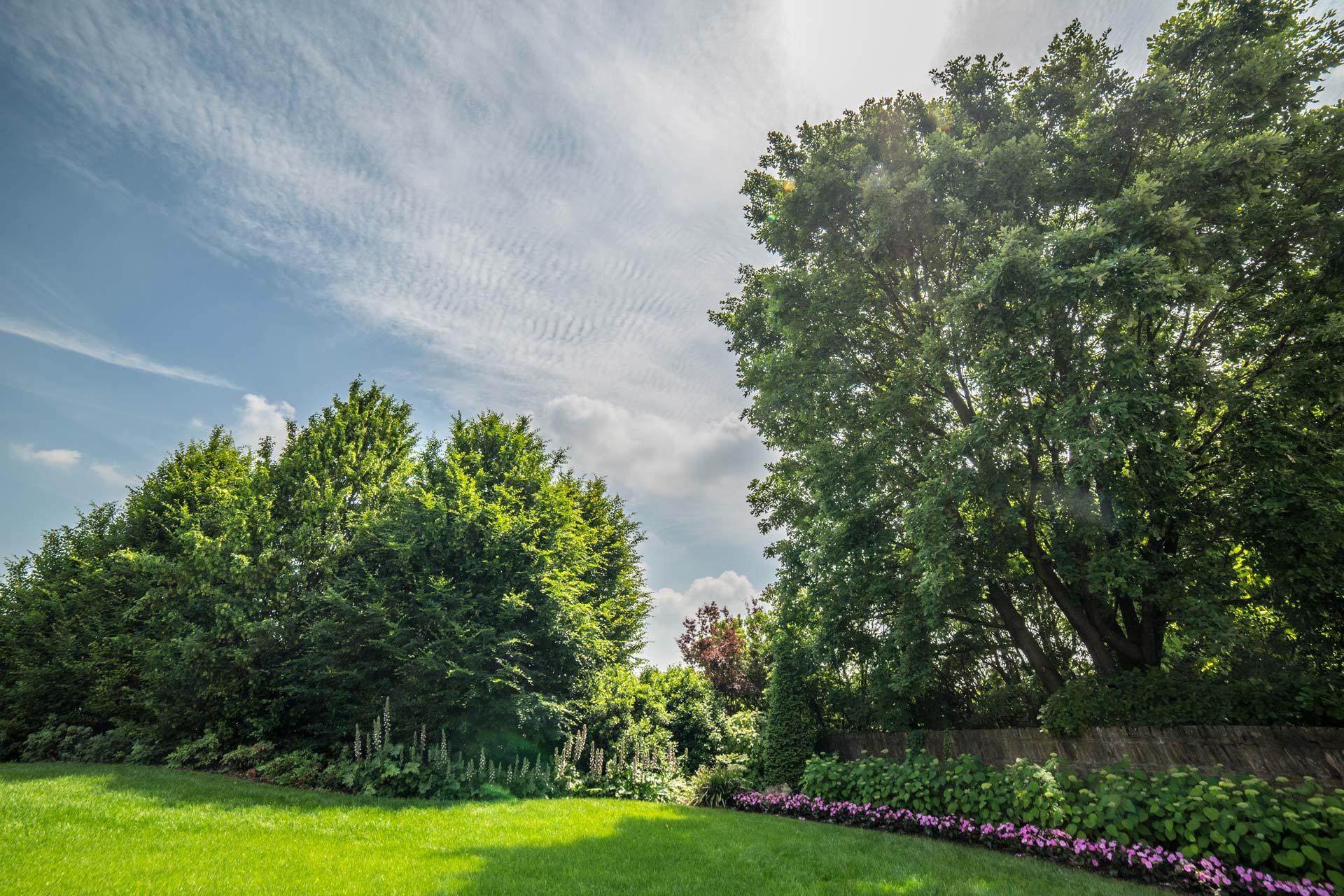 https://www.salmasogarden.it/wp-content/uploads/2020/11/foto-dettaglio-giardino-con-aiuola-2.jpg