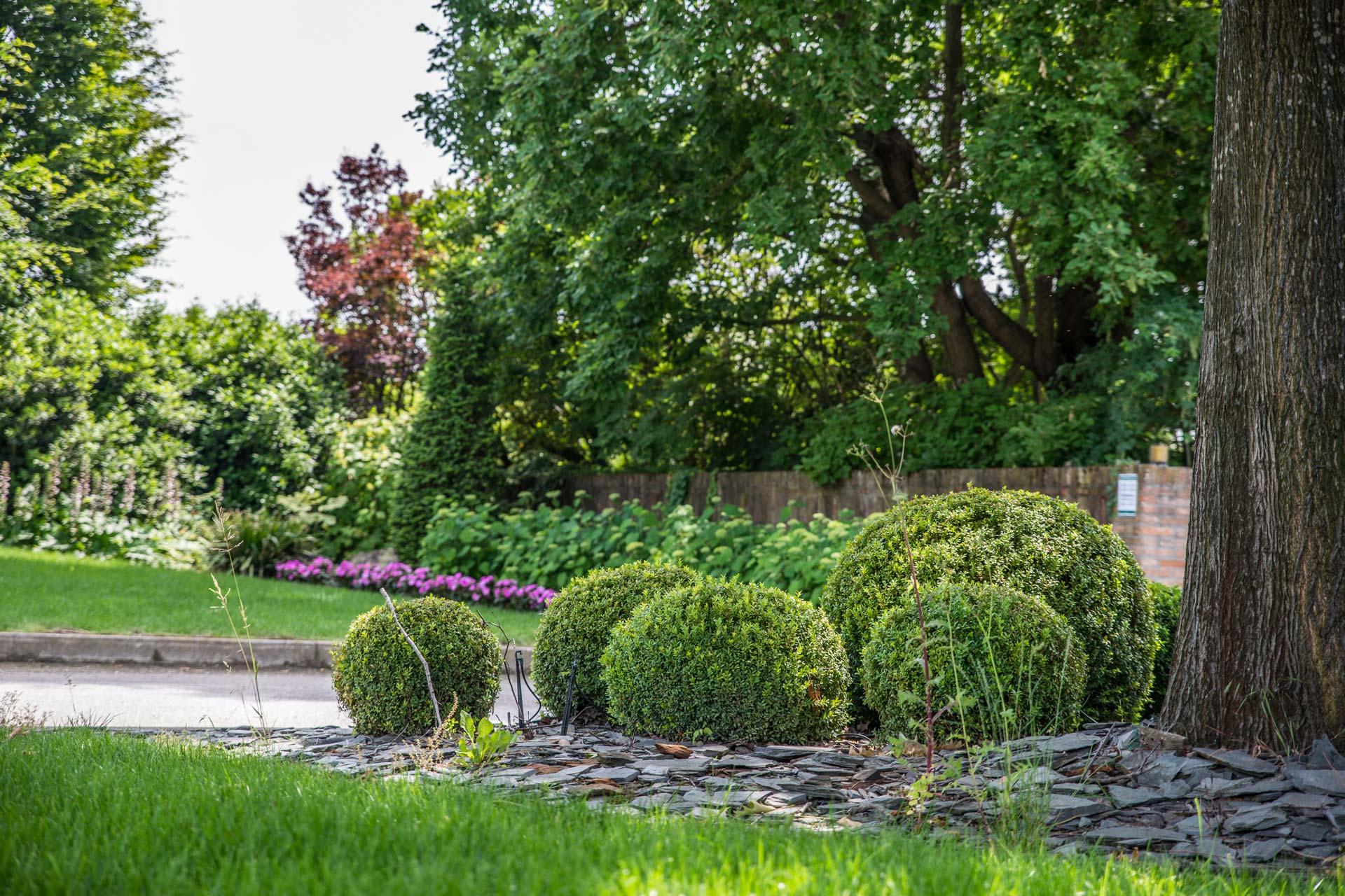 https://www.salmasogarden.it/wp-content/uploads/2020/11/foto-dettaglio-giardino-con-aiuola.jpg