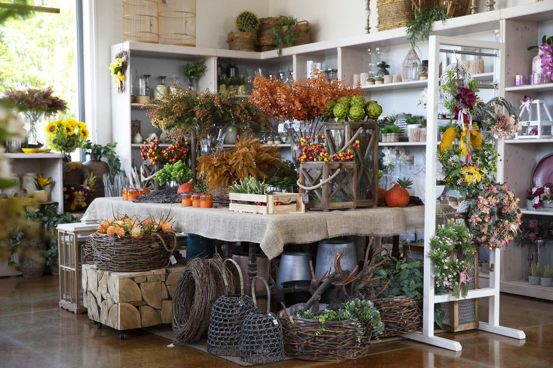 https://www.salmasogarden.it/wp-content/uploads/2020/11/reparti-salmaso-garden-decorazioni-per-la-casa.jpg