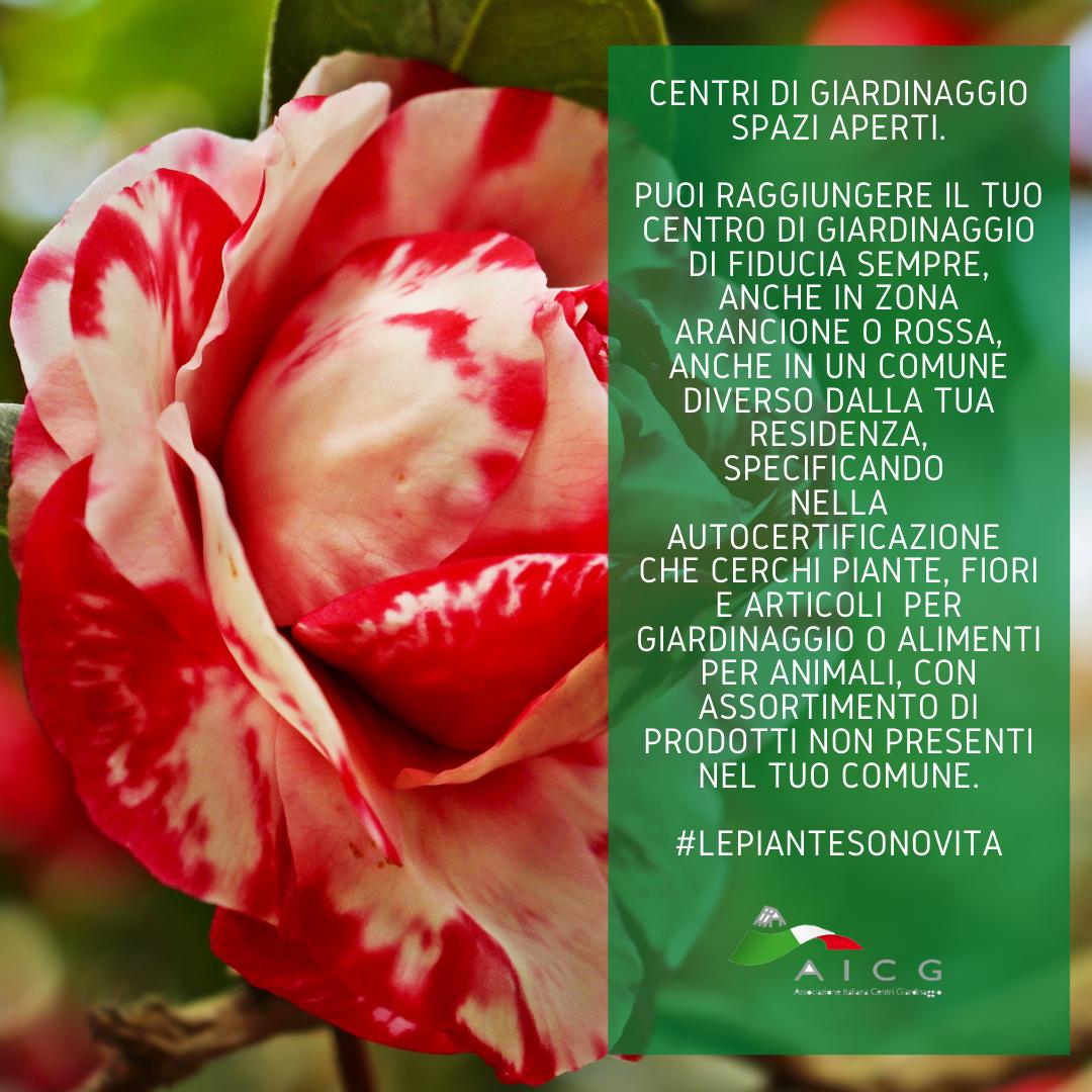 https://www.salmasogarden.it/wp-content/uploads/2021/03/Centri_Giardinaggio_Spazi_Aperti_2.png