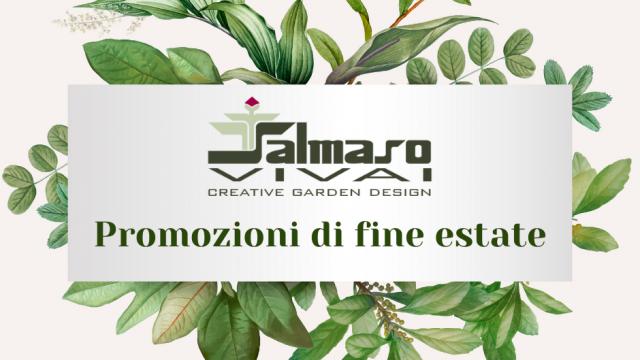 https://www.salmasogarden.it/wp-content/uploads/2021/08/Promozioni-di-fine-estate-640x360.png