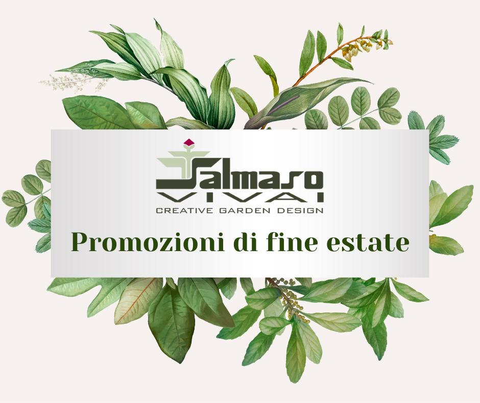 https://www.salmasogarden.it/wp-content/uploads/2021/08/Promozioni-di-fine-estate.png